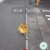 Pokémon GOが日本でも配信!早速ダウンロードしてやってみた!